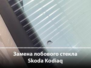 замена лобового на шкода кодиак